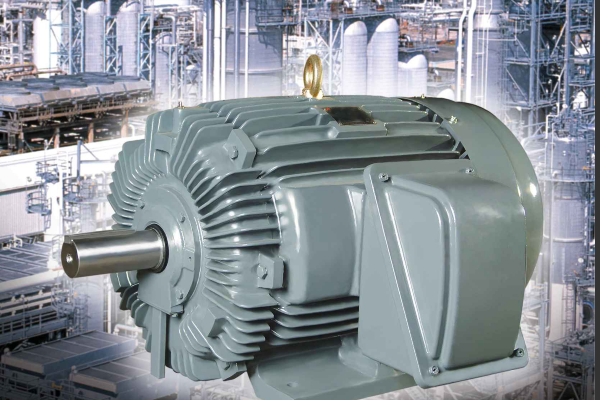Ac Electric Motor (High Efficiency)